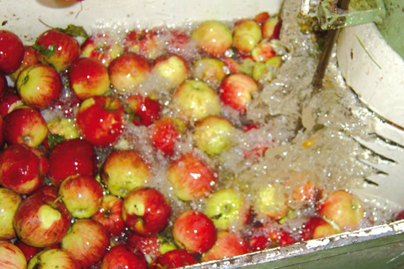 Äpfel | © Bio-Hotel - Alpengasthof Koralpenblick